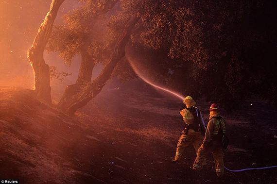 Incendios en California Verano negro para los bosques de California, que afectó al parque Nacional de Yosemite