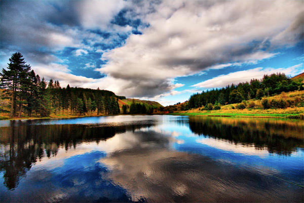 Loch Tree Clouds Reflections